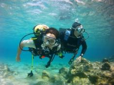 PADI –  Discover Scuba Diving - Scuba Divers Under Water
